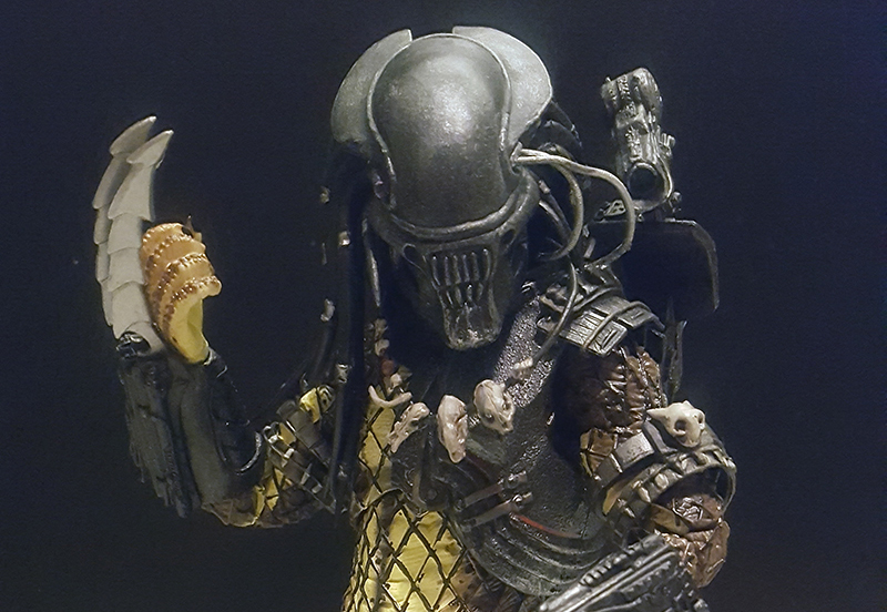 NECA Predator Series 17 AvP Serpent Hunter Predator Review